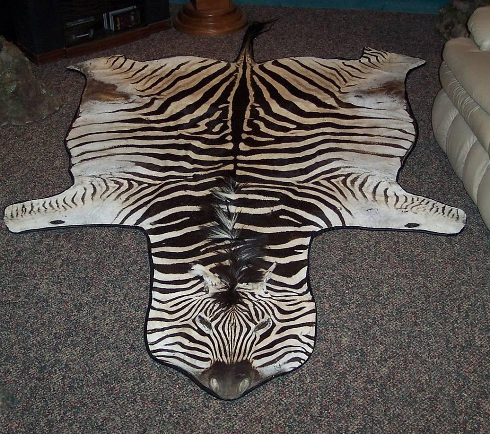 Zebra Rug Sale Rugs Sale